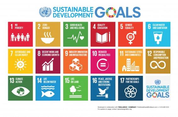 Agenda Globala de Dezvoltare