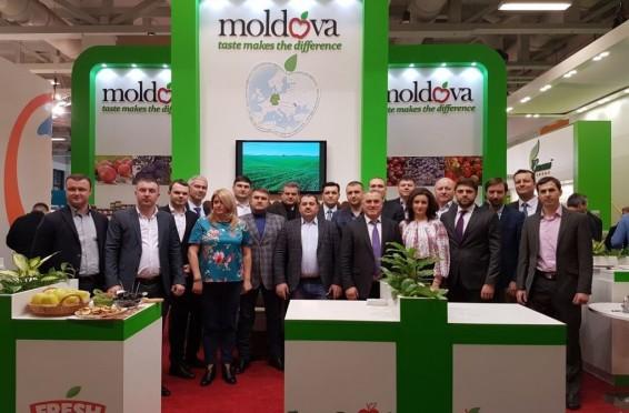 Moldova fruct
